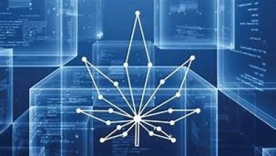 Improving the Cannabis Industry With Blockchain